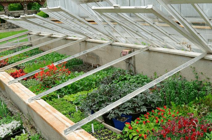 На четыре дня Москва стала мировой столицей фермерства. В центре внимания – органическое земледелие.