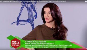 Будущее органик-индустрии на Кубани: интервью с кандидатом биологических наук Анжелой Асатуровой