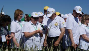 Компания «Био-Хутор» поделилась опытом органического земледелия в рамках семинара ФГБУ «Россельхозцентр»