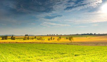 Германия последовательно увеличивает число органически возделываемых сельхозугодий