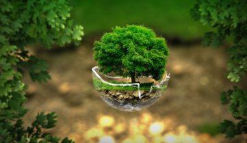 Мировая экономика накапливает экологический долг