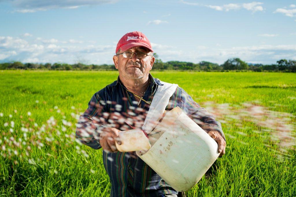 Потянулись к земле: в России вводят закон об органических продуктах