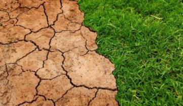 Гумат, как основной элемент в системе восстановления и биологизации сельхозземель