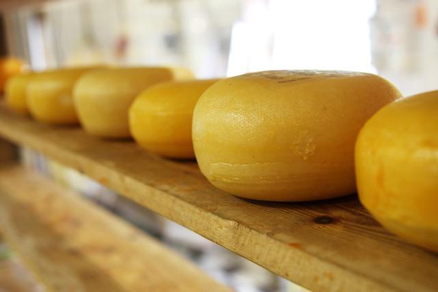 сыр органический кострома