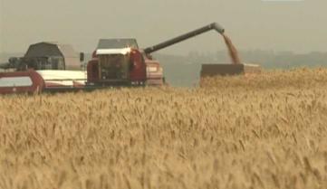 Перспективы органического земледелия на Орловщине