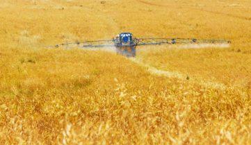 Польза биопестицидов доказана – но почему фермеры предпочитают агрохимию